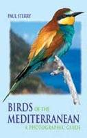 Birds of the Mediterranean
