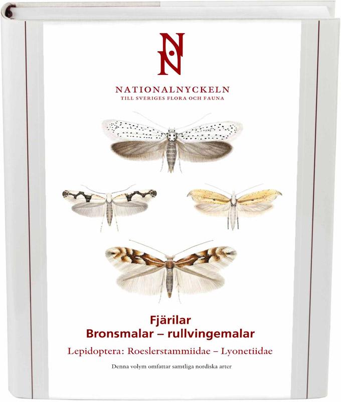 Bronsmalar - rullvingemalar. Roeslerstammiidae - Lyonetiidae