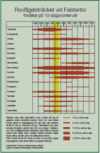Tabell oversikt over rovfugltrekket