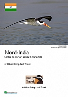 Nordlige India 2020 II