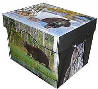 Fuglekort med vanlige norske fugler