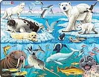Puslespill - Arktisk is m/dyr