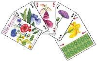 Markblomster - Wild Flowers