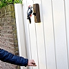 Flaggspett dørhammer