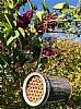 Ynglekasse for solitære bier