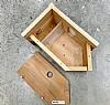 Fuglekasse for kamera odd Box