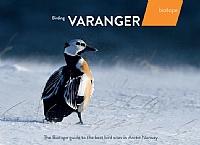 Birding Varanger