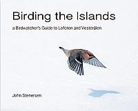 Birding the Islands