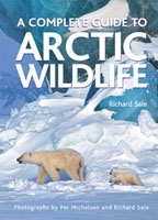 A Complete Guide to Arctic Wildlife
