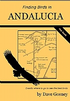 Finding Birds in Andalucia