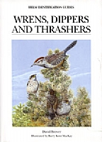 Wrens, Dippers and Trashers