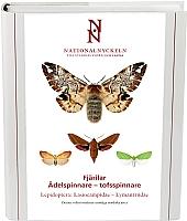 Fjärilar: Svärmare och spinnare