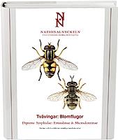 Tvåvingar: Blomflugor. Syrphidae: Eristalinae & Microdontinae