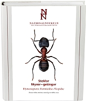 Steklar: Myror - getingar. Hymenoptera: Formicidae–vespidae