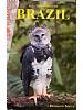 All the Birds of Brazil