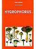 Fungi Europaei Vol. 6
