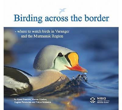 Birding across the border