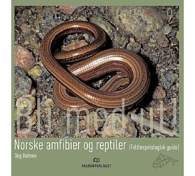 Norske amfibier og reptiler