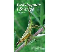 Identifikasjon av gresshopper