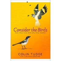 Consider The Birds - How They Live and Why They Matter
