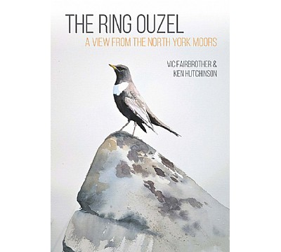 The Ring Ouzel